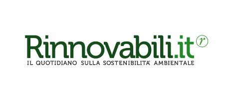 Logo rinnovabili