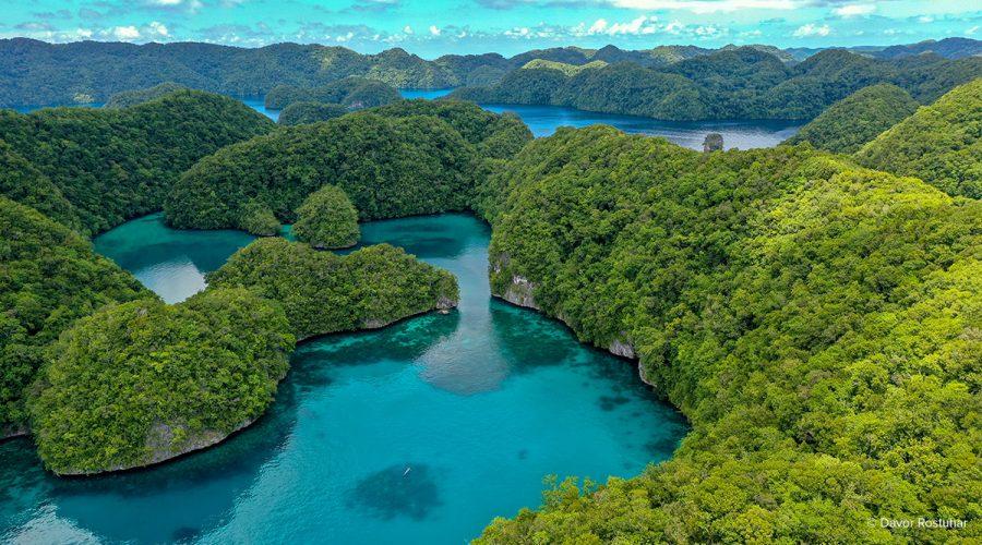 Palau-Release-Header